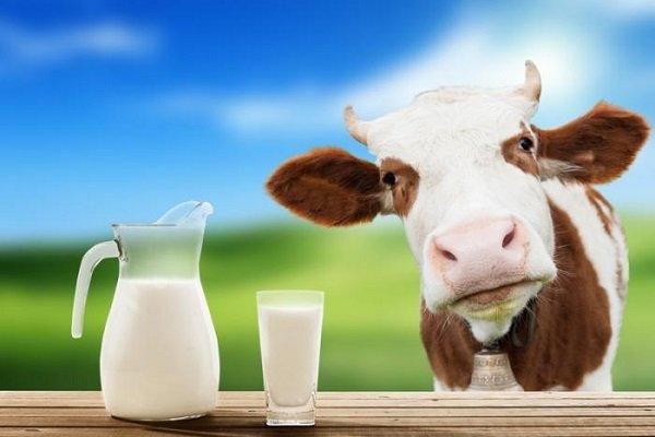 выбор молока при диабете