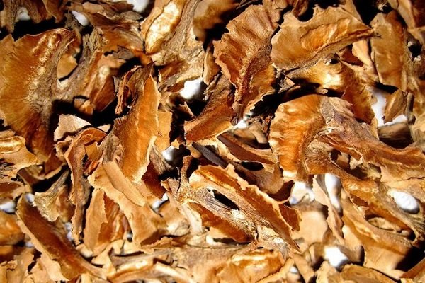 перепонки грецкого ореха свойства