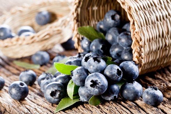 фрукты при диабете