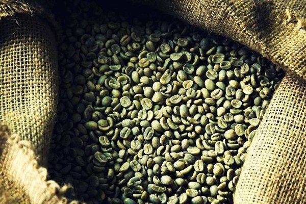 особенности применения зеленого кофе при диабете