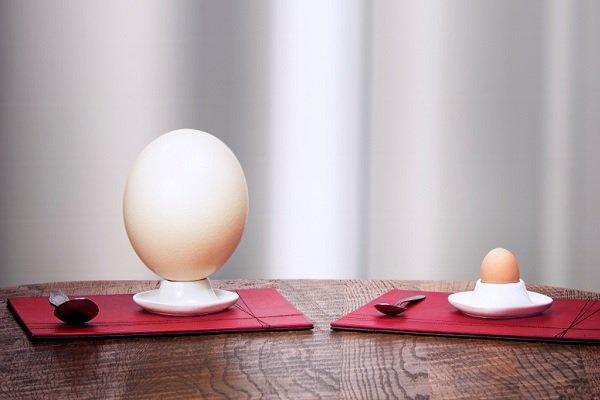 страусиные яйца для диабетика