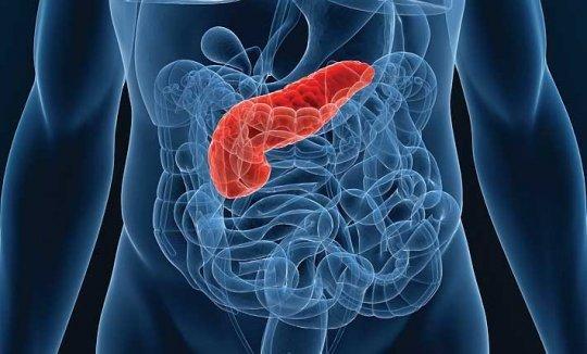 Чем и как лечить поджелудочную железу при сахарном диабете: как восстановить