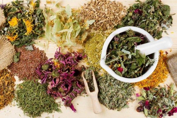 Лекарственные травы от головной боли